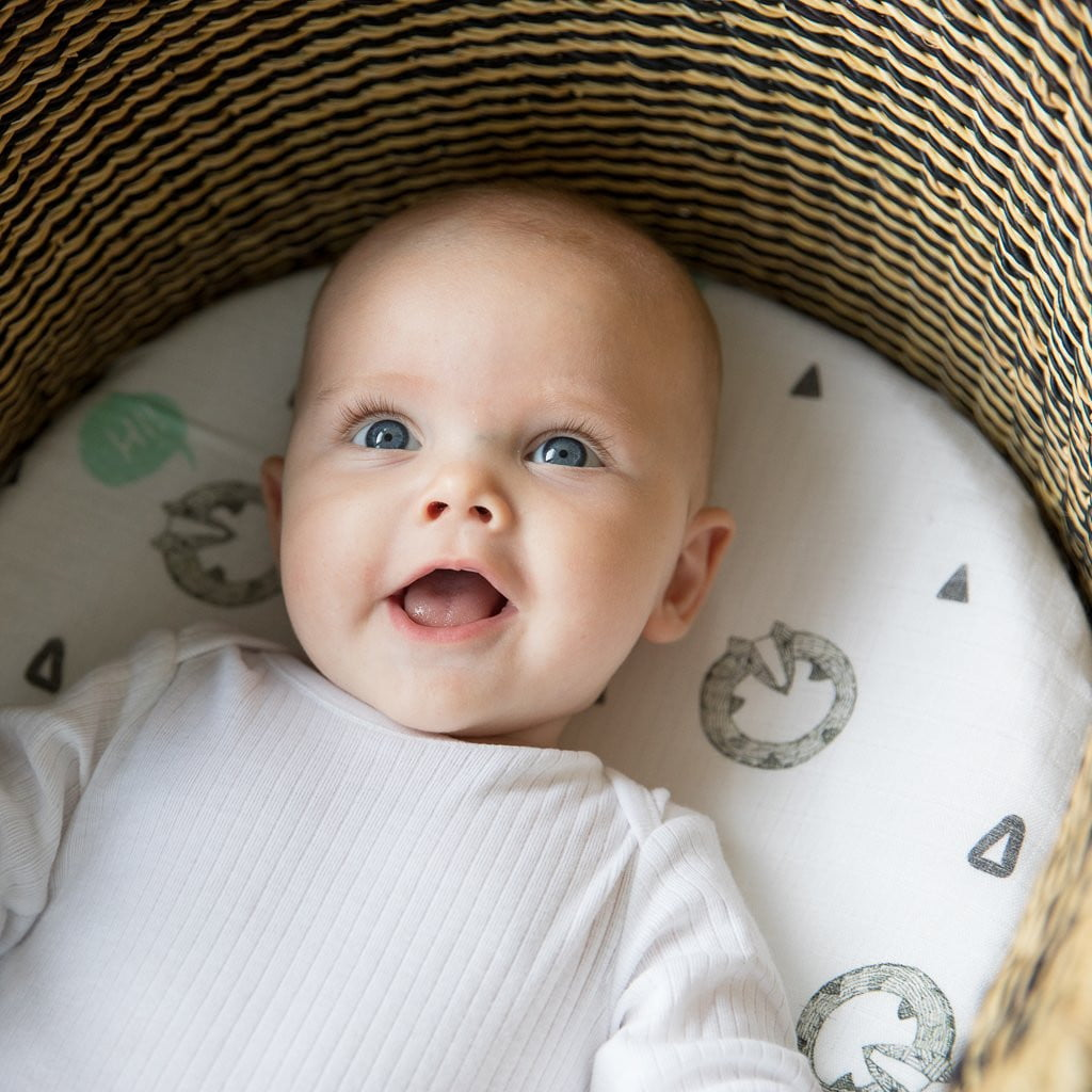 Baby in Badger Moses Basket Sheets