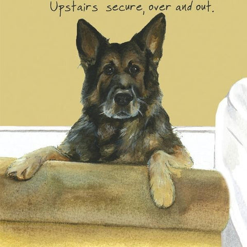 Upstairs secure over out german shepherd greeting card upstairs secure over out german shepherd greeting card m4hsunfo