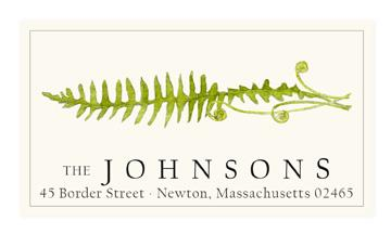 Custom Address Stickers - Fern Stem