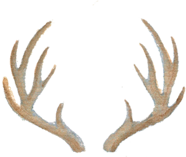 Antlers downloadable artwork