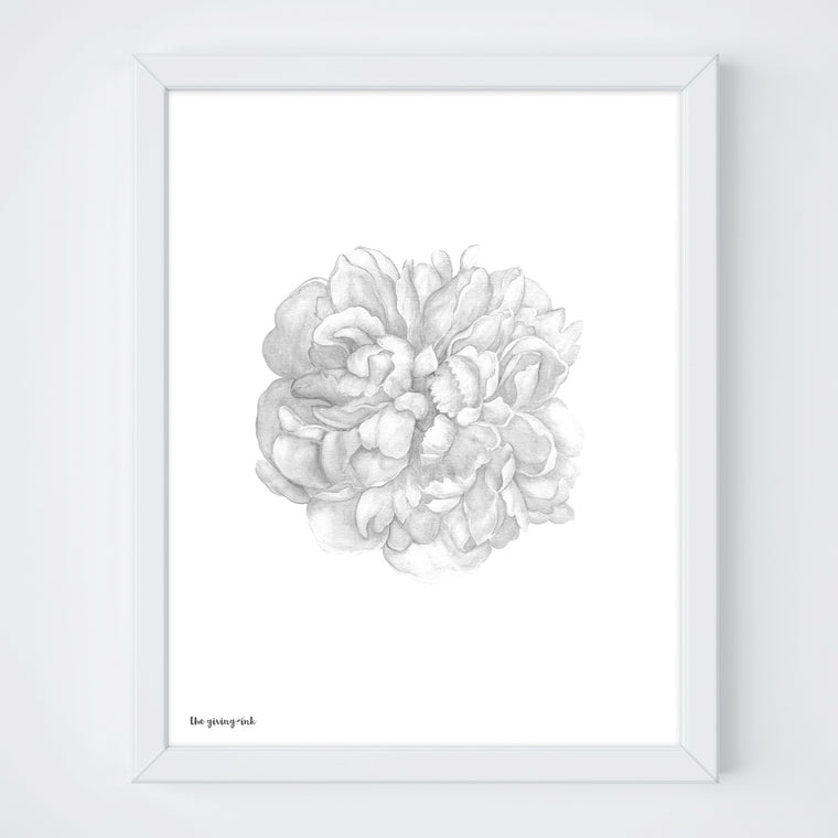 Black and White Peony Botanical Print