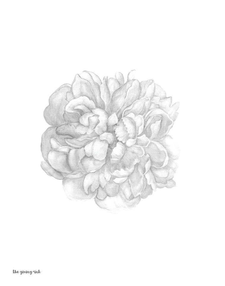 Black and White Peony Botanical Downloadable Print