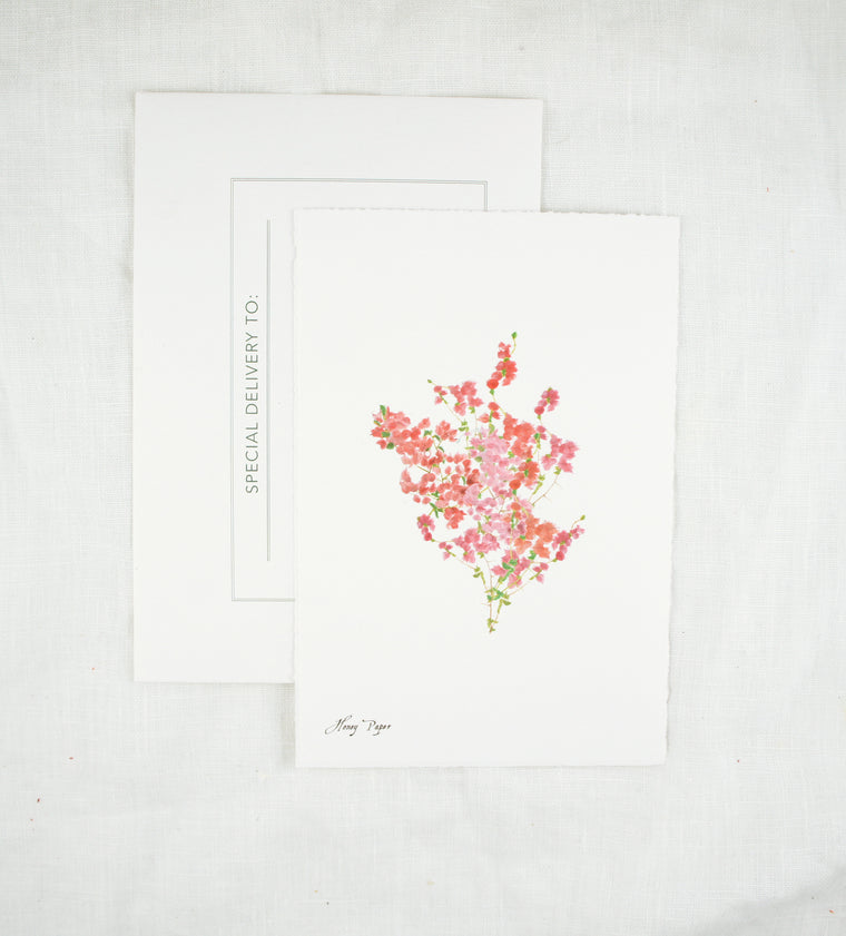 Bougainvillea Greeting Card and Notecard Sets