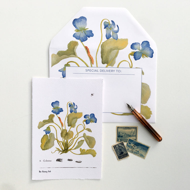 Cyclamen Greeting Cards and Notecards Sets