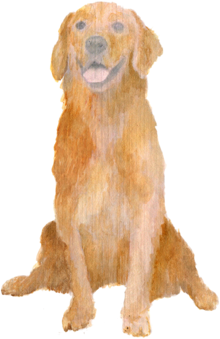 Golden Retriever Dog downloadable artwork