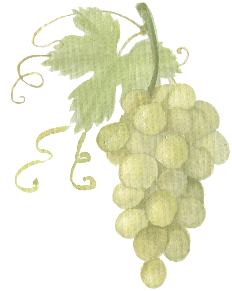 Green Grape bunch downloadable artwork