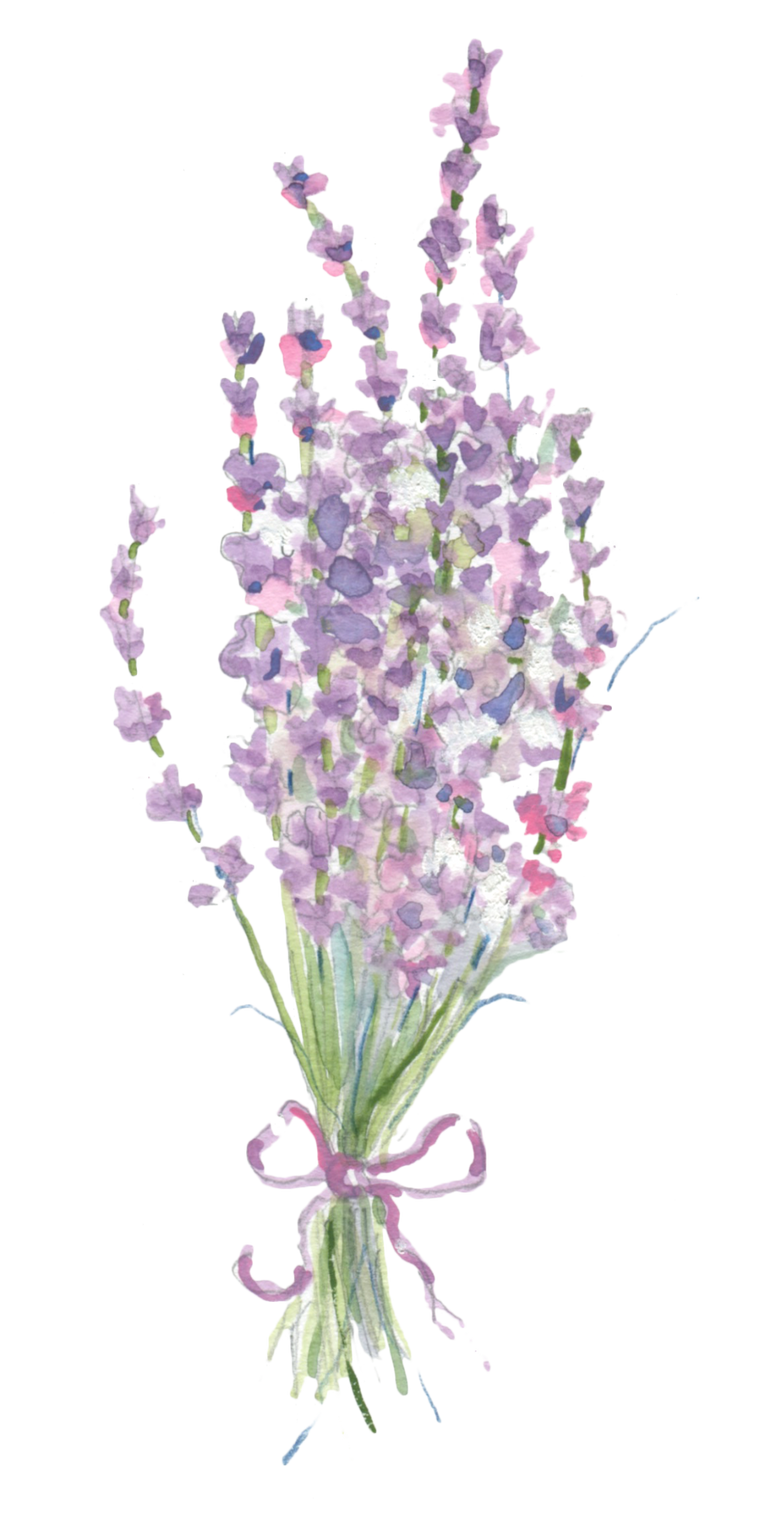 Lavender Bunch downloadable artwork