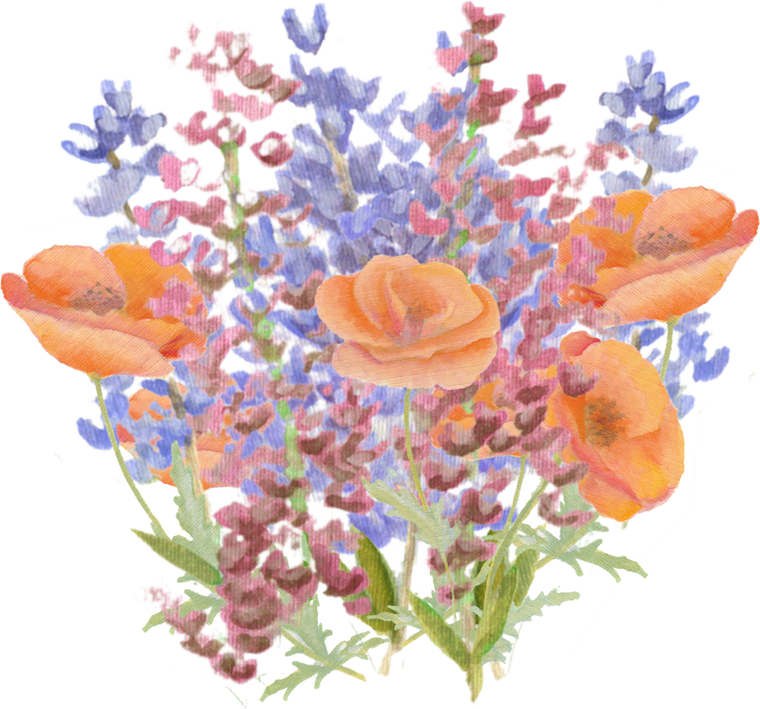 Lupine Wildflower downloadable artwork