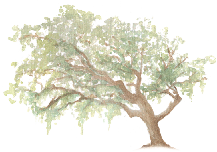 Oak Tree downloadable artwork
