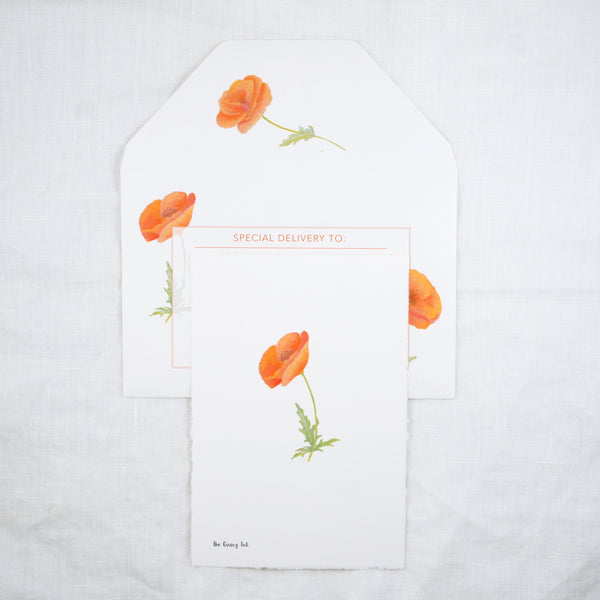 Poppy Greeting Cards and Notecard Sets
