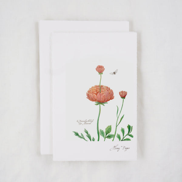 Botanical art print by Michelle Castle of ranunculus