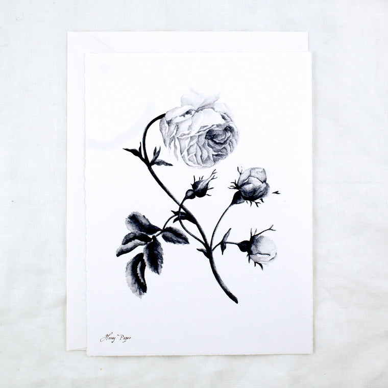 Black and White Rose Greeting Cards & Notecard Sets