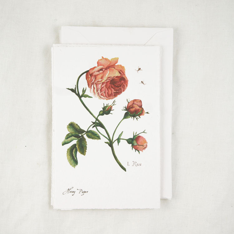 Red Rose Greeting Cards and Notecard Sets
