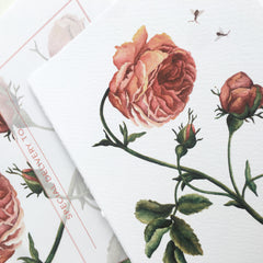 Rose Valentine Greeting Card