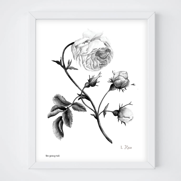 Black and White Rose Print