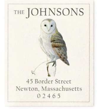 Custom Address Stickers - Winter Barn Owl