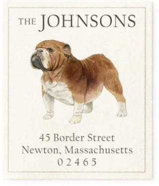 Custom Address Stickers - English Bulldog