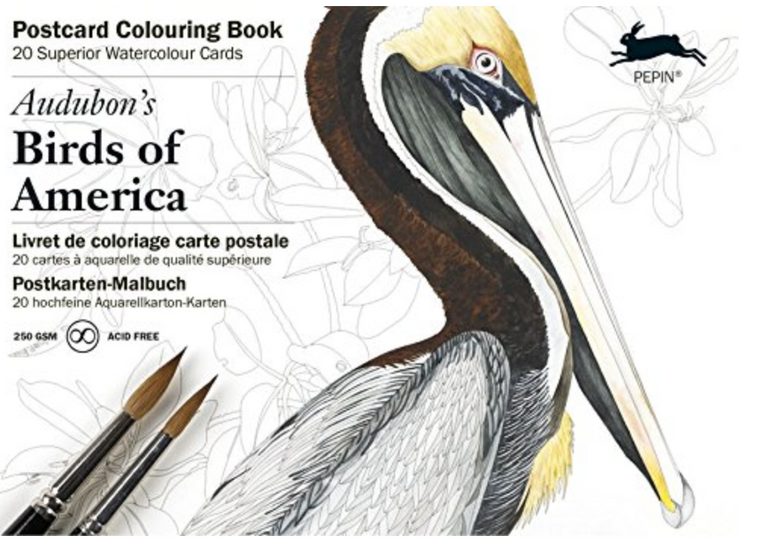Postcard Coloring Book - Audubon Birds of America