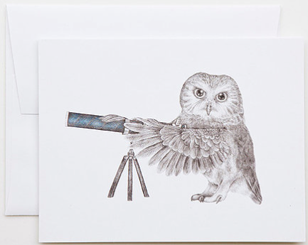 Pearl Papineau Saw Whet Owl Greeting Card