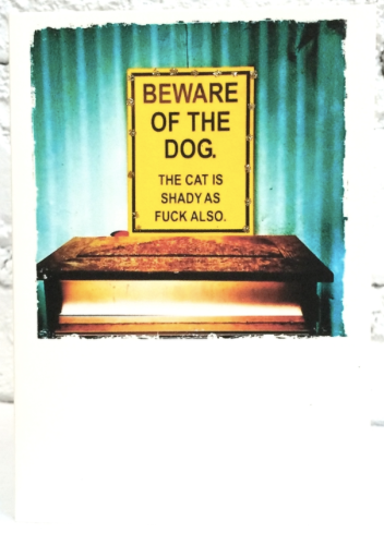 Beware Of The Dog Greeting Card