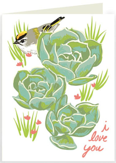 Kinglet and Succulents