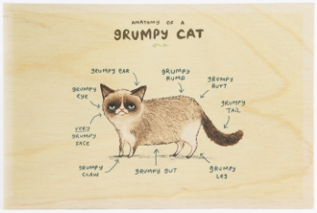 Anatomy of a Grumpy Cat Wooden Postcard