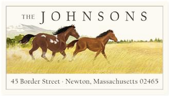 Custom Address Stickers - Mustangs (2 Styles Available)