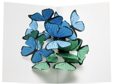 Beautiful Butterflies Pop-Up Boxed Set