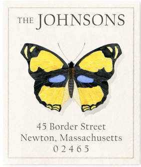 Custom Address Stickers - Blue Eyes Butterfly