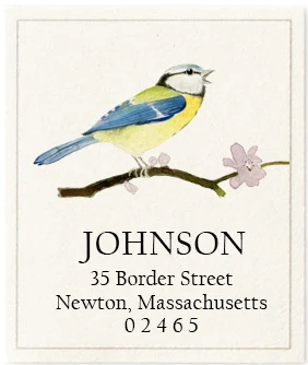 Custom Address Stickers - Blue Tit Songbird