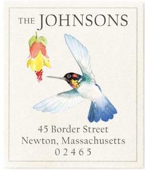 Custom Address Stickers - Bee Hummingbird