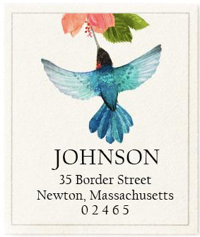 Custom Address Stickers - Azure Hummingbird