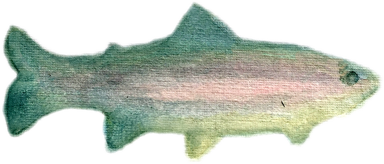 Trout downloadable artwork