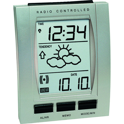 Indoor Temperature Alarm Clock WT293