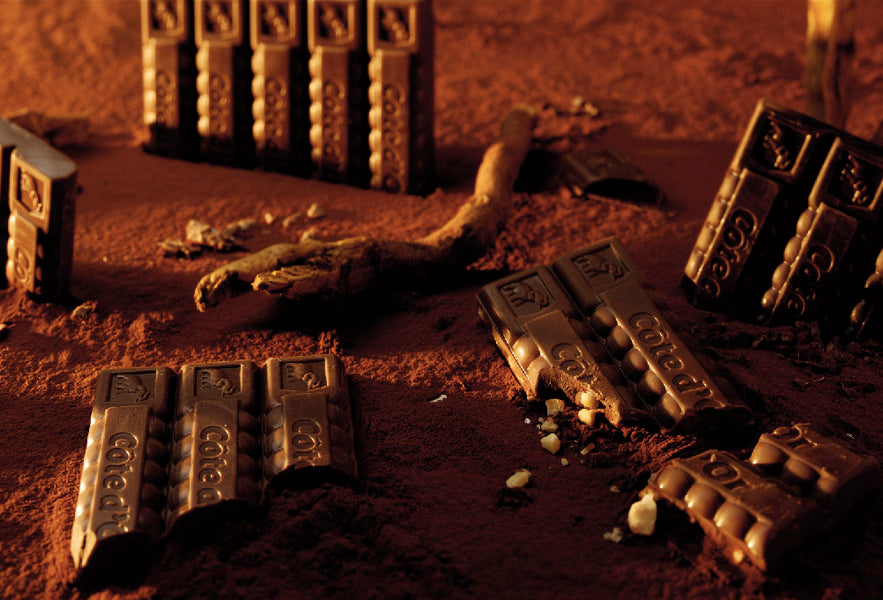 The Surprising History of Cote d'Or Chocolate