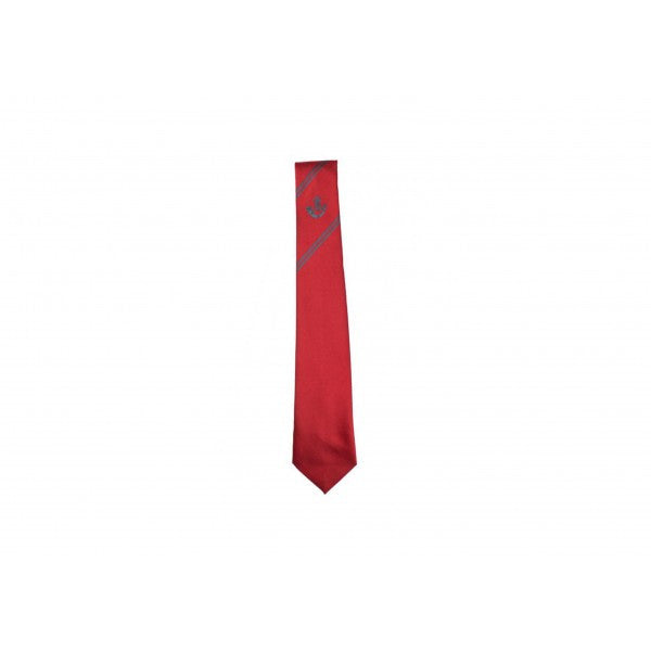 Hunterhouse College Sixth Form Tie