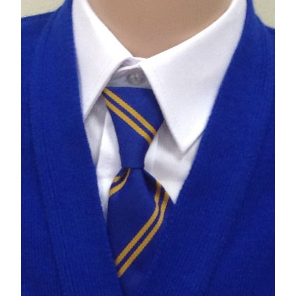 Castlewellan Primary School Elasticated Tie