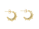 18k Gold Vermeil Sanganer Earrings