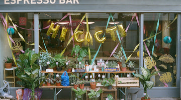 Hi Cacti Launches New Plant Shop in Brighton