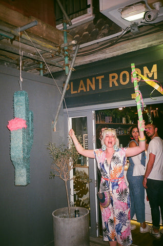 Hi Cacti fiesta Brighton the plant room