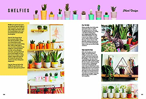 Hi Cacti: Growing Houseplants and Happiness Sabina Palermo indoor plant care tips brighton best houseplant book guide plant care is self care