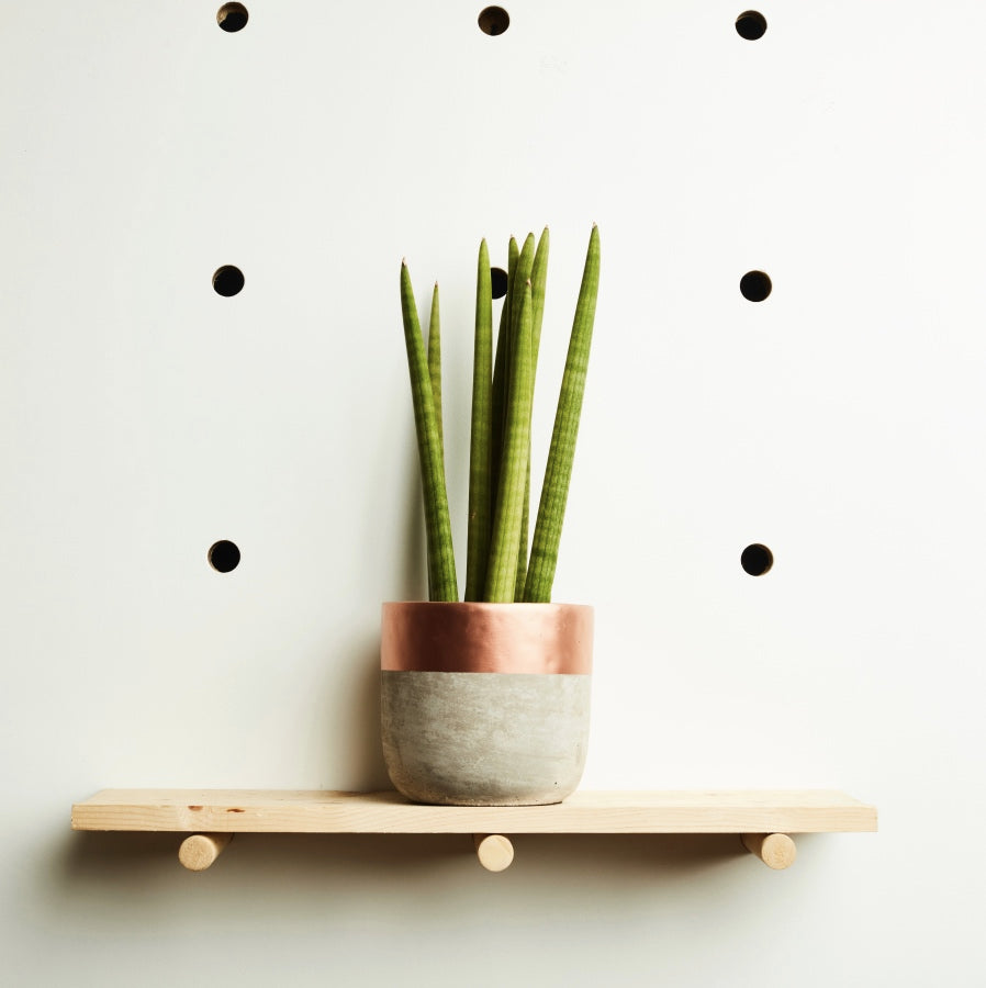 Concrete Plant Pot Medium | Copper