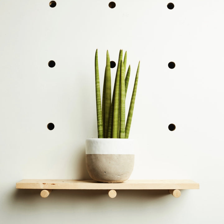 Concrete Plant Pot Large | White