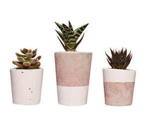 Concrete Cactus Pots: Set of three- White
