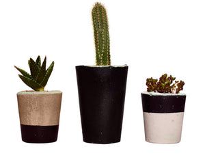 Concrete cactus planter set of 3 in black