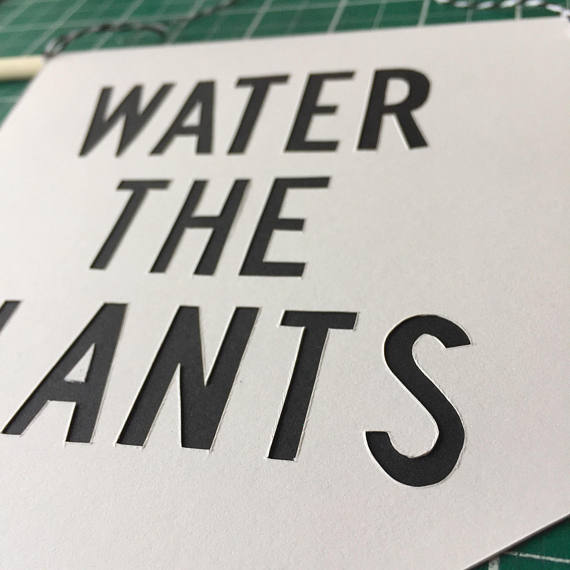 Pennant Flag 'Water the Plants' Houseplant banner