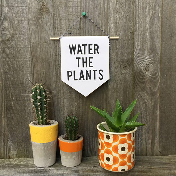 Pennant Flag 'Water the Plants' Plant killer sign