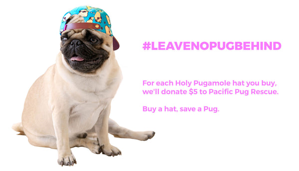 Leave No Pug Behind Donation