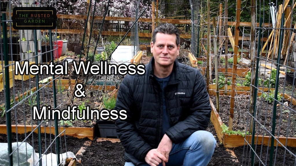 Mental Wellness & Mindfulness in the Garden E-2: Breaking Negative 'What If' Scenarios & Creative Planning