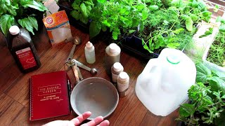 Using Garden Spray Recipes 101: Neem Oil, Peppermint Oil, Baking Soda & Hydrogen Peroxide Sprays Explained!